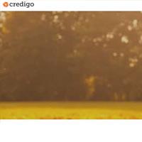 Kuvakaappaus Credigo lainapalvelusta